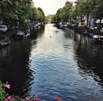 Lone Swan Canal